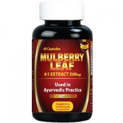 Mulberry Leaf 4:1 Extract 500 mg