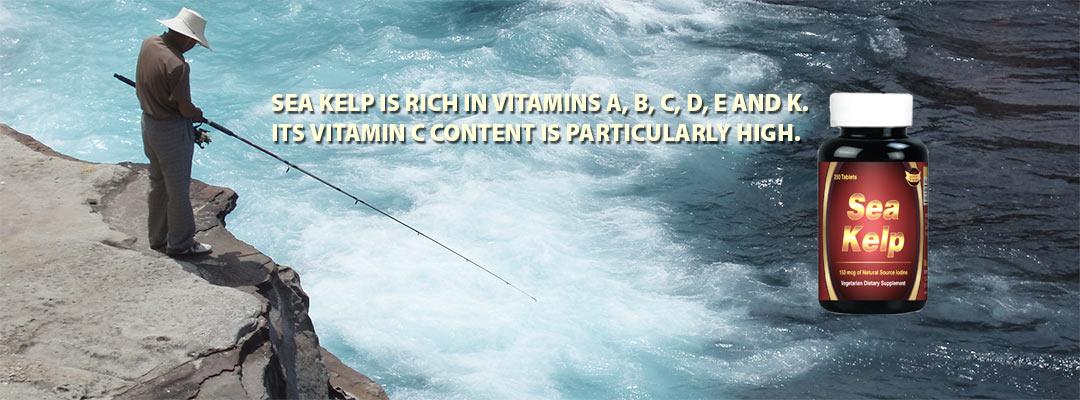 Support Nutrition Vitamins Sea Kelp